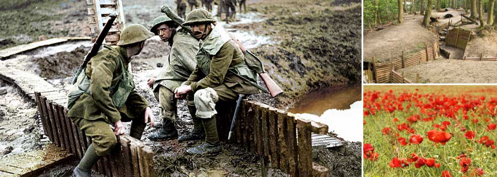 FIND OUT ABOUT THE MEN THAT SERVED IN THE GREAT WAR
